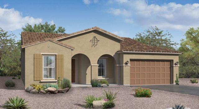 14386 S 178TH Drive, Goodyear, AZ 85338 (MLS #5940462) :: The Property Partners at eXp Realty