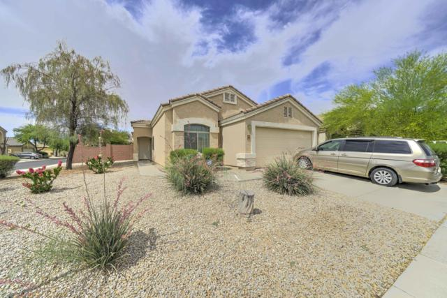 5683 E Oasis Court, Florence, AZ 85132 (MLS #5940473) :: Yost Realty Group at RE/MAX Casa Grande
