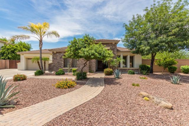 421 E Elgin Street, Gilbert, AZ 85295 (MLS #5940487) :: The Kenny Klaus Team