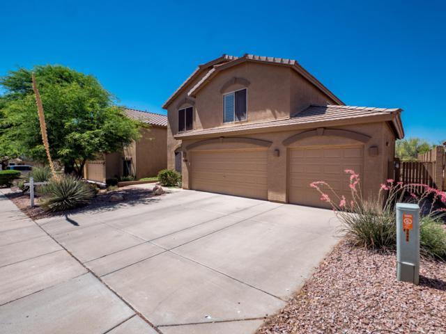 7546 E Christmas Cholla Drive, Scottsdale, AZ 85255 (MLS #5940493) :: Occasio Realty