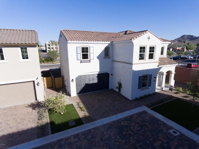 967 E Danbury Drive, Phoenix, AZ 85022 (MLS #5940505) :: Revelation Real Estate