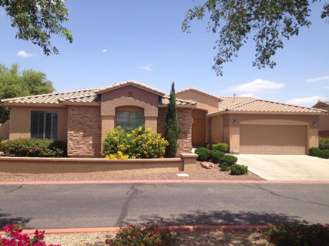 1160 E Hawken Way, Chandler, AZ 85286 (MLS #5940509) :: The AZ Performance Realty Team