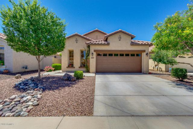 36113 W Vera Cruz Drive, Maricopa, AZ 85138 (MLS #5940522) :: The AZ Performance Realty Team