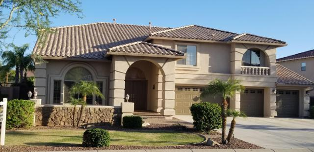 9785 W Maya Way, Peoria, AZ 85383 (MLS #5940523) :: Phoenix Property Group