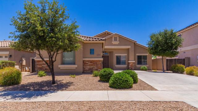 16403 W Canterbury Drive, Surprise, AZ 85388 (MLS #5940528) :: Riddle Realty