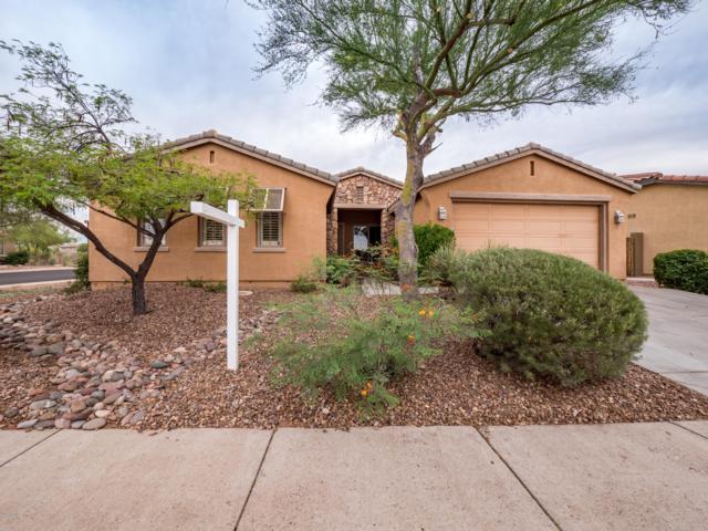 3358 W Sousa Drive, Anthem, AZ 85086 (MLS #5940536) :: Revelation Real Estate