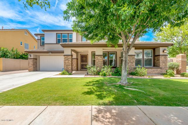 3643 E Comstock Drive, Gilbert, AZ 85296 (MLS #5940546) :: The Kenny Klaus Team