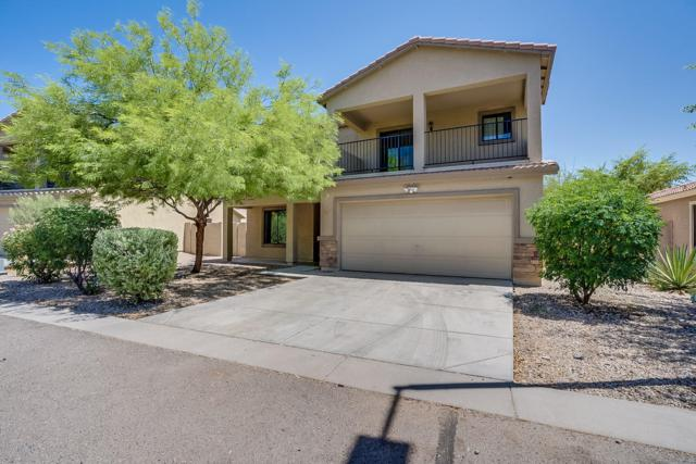 2321 E 28TH Avenue, Apache Junction, AZ 85119 (MLS #5940547) :: Nate Martinez Team