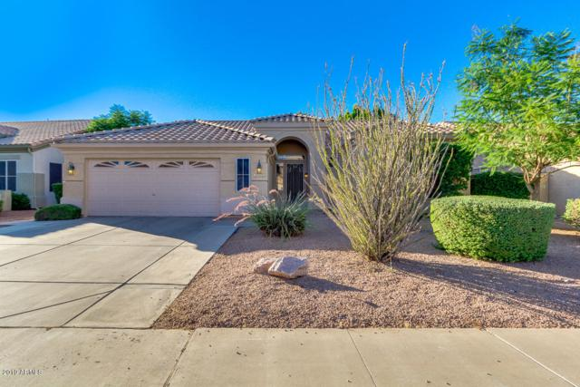 1402 W Park Avenue, Gilbert, AZ 85233 (MLS #5940566) :: Kepple Real Estate Group