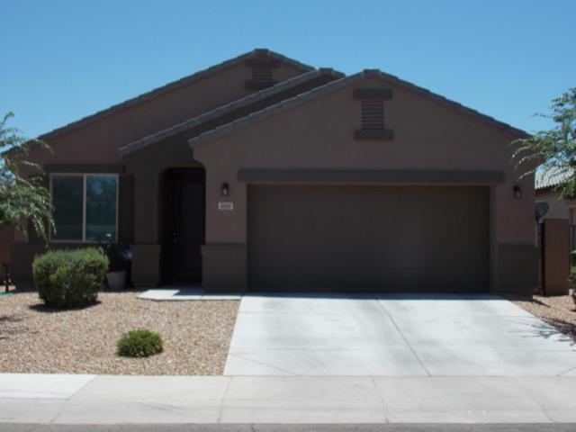 41169 W Ganley Way, Maricopa, AZ 85138 (MLS #5940569) :: Team Wilson Real Estate