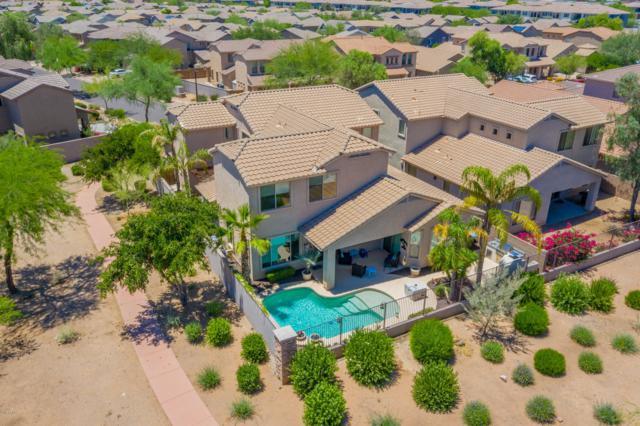 3002 W Via De Pedro Miguel, Phoenix, AZ 85086 (MLS #5940570) :: Revelation Real Estate