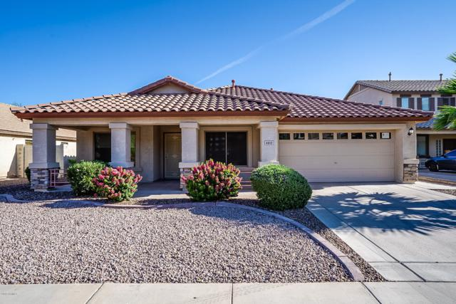 4810 W Samantha Way, Laveen, AZ 85339 (MLS #5940577) :: Occasio Realty
