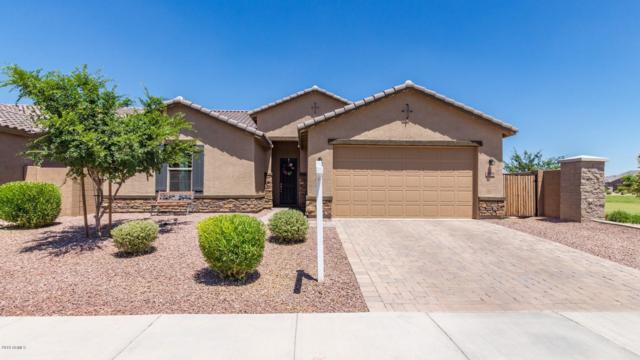35509 N Kelsee Drive, Queen Creek, AZ 85142 (MLS #5940601) :: Riddle Realty
