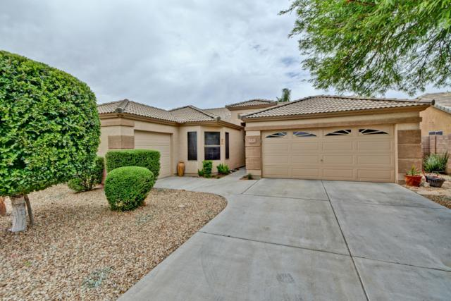 16366 W Ironwood Street, Surprise, AZ 85388 (MLS #5940605) :: Revelation Real Estate