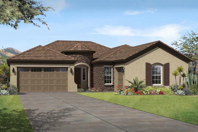 7701 S 42ND Way, Phoenix, AZ 85042 (MLS #5940610) :: Occasio Realty