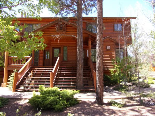 2276 Overgaard Springs Lo Loop, Overgaard, AZ 85933 (MLS #5940611) :: The Luna Team