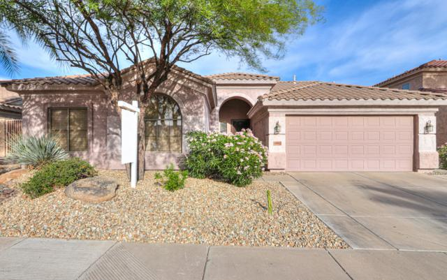16843 S 15TH Avenue, Phoenix, AZ 85045 (MLS #5940620) :: Santizo Realty Group