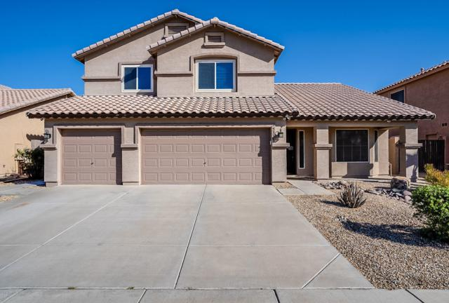 5356 W Taro Lane, Glendale, AZ 85308 (MLS #5940630) :: Occasio Realty