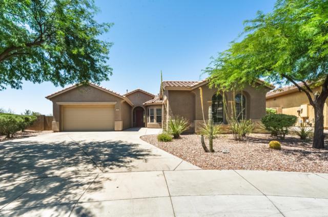 3605 W Links Drive, Phoenix, AZ 85086 (MLS #5940651) :: The Pete Dijkstra Team