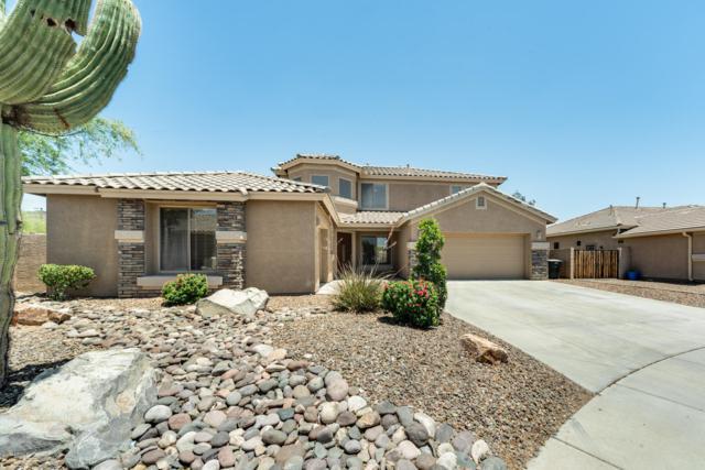 4234 W Avenida Del Rey, Phoenix, AZ 85083 (MLS #5940666) :: The Everest Team at My Home Group