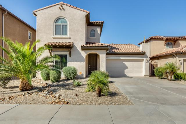 25615 N 51ST Drive, Phoenix, AZ 85083 (MLS #5940670) :: The Laughton Team