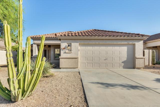 7455 W Potter Drive, Glendale, AZ 85308 (MLS #5940673) :: The Bill and Cindy Flowers Team