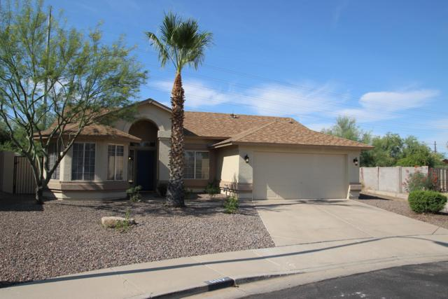6117 E Cicero Street, Mesa, AZ 85205 (MLS #5940674) :: The Bill and Cindy Flowers Team