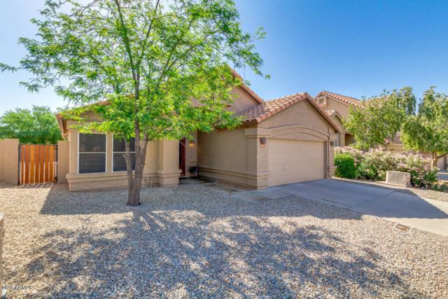16819 S 13TH Way, Phoenix, AZ 85048 (MLS #5940682) :: Arizona 1 Real Estate Team
