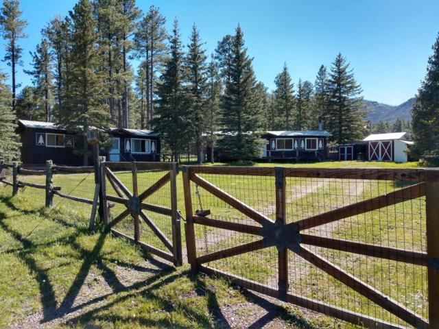 25329 Hwy 191, Alpine, AZ 85920 (MLS #5940693) :: CC & Co. Real Estate Team