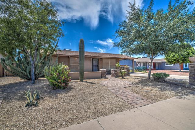 4814 N 87th Avenue, Phoenix, AZ 85037 (MLS #5940708) :: Occasio Realty