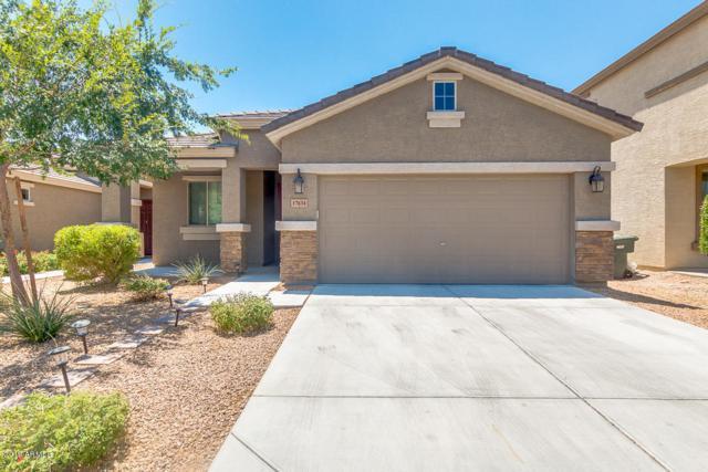 17634 N 17TH Lane, Phoenix, AZ 85023 (MLS #5940709) :: Revelation Real Estate