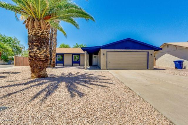 1106 E Fremont Drive, Tempe, AZ 85282 (MLS #5940710) :: The C4 Group