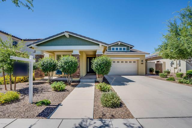 14869 W Dreyfus Street, Surprise, AZ 85379 (MLS #5940725) :: Revelation Real Estate