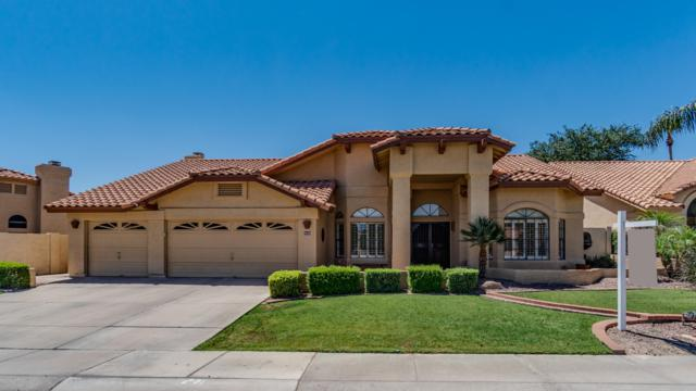 3360 S Oleander Drive, Chandler, AZ 85248 (MLS #5940731) :: The C4 Group