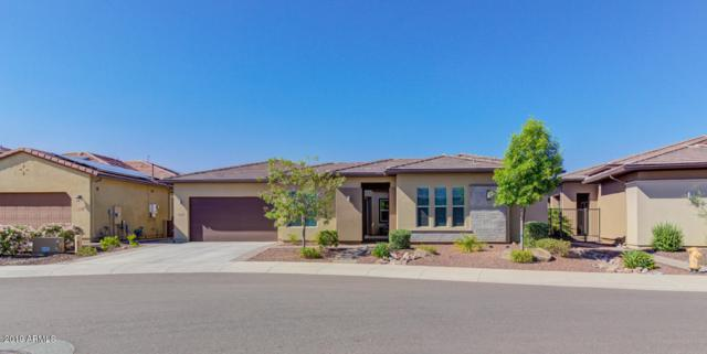 13252 W Domino Drive, Peoria, AZ 85383 (MLS #5940748) :: Nate Martinez Team