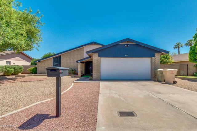 4647 W Myrtle Avenue, Glendale, AZ 85301 (MLS #5940758) :: Revelation Real Estate