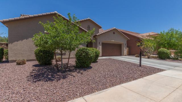 3038 W Burgess Lane, Phoenix, AZ 85041 (MLS #5940768) :: Occasio Realty