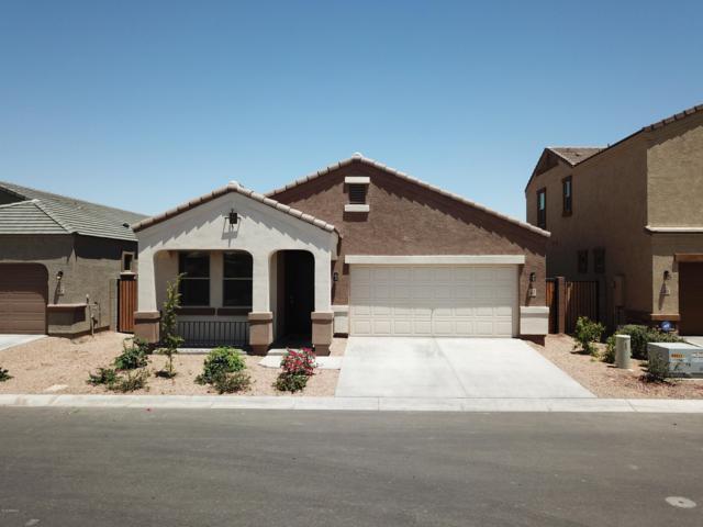 1617 N Westwood Circle, Mesa, AZ 85201 (MLS #5940777) :: Kepple Real Estate Group