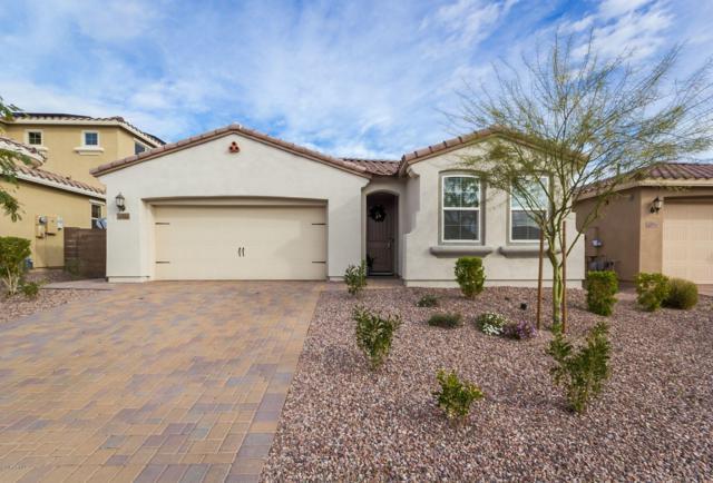 13720 W Amberwing Street, Peoria, AZ 85383 (MLS #5940790) :: Kortright Group - West USA Realty