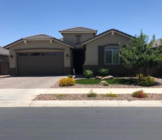 20745 E Canary Way, Queen Creek, AZ 85142 (MLS #5940822) :: The C4 Group