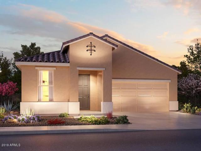 617 N San Ricardo Court, Casa Grande, AZ 85194 (MLS #5940827) :: The Kenny Klaus Team