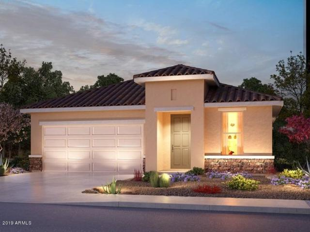 609 N San Ricardo Court, Casa Grande, AZ 85194 (MLS #5940842) :: The Kenny Klaus Team