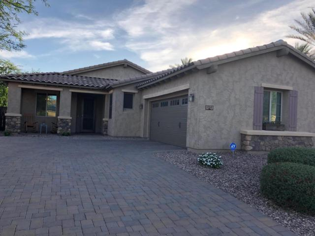 1742 N 144TH Drive, Goodyear, AZ 85395 (MLS #5940856) :: Cindy & Co at My Home Group