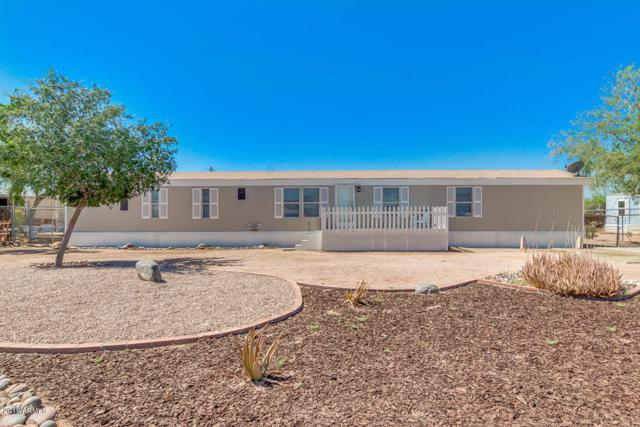 1249 W Cactus Wren Street, Apache Junction, AZ 85120 (MLS #5940860) :: Nate Martinez Team