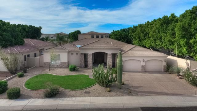 1730 E Aurelius Avenue, Phoenix, AZ 85020 (MLS #5940888) :: Brett Tanner Home Selling Team