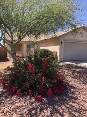 42244 W Calle Street, Maricopa, AZ 85138 (MLS #5940918) :: Lux Home Group at  Keller Williams Realty Phoenix