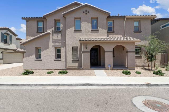 16530 W Culver Street, Goodyear, AZ 85338 (MLS #5940930) :: The Pete Dijkstra Team