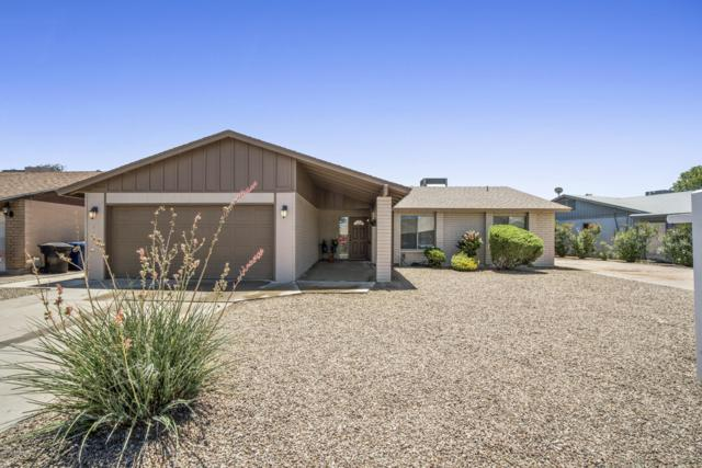 1519 S Chestnut Circle, Mesa, AZ 85204 (MLS #5940940) :: Revelation Real Estate