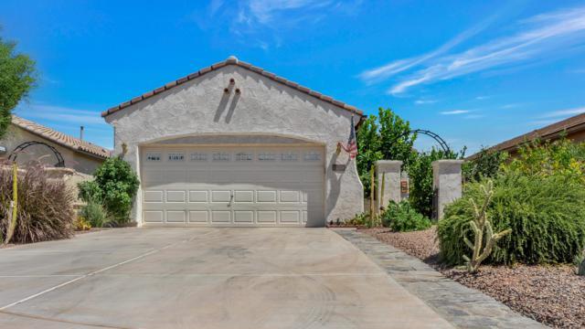 26254 W Behrend Drive, Buckeye, AZ 85396 (MLS #5940946) :: The Pete Dijkstra Team