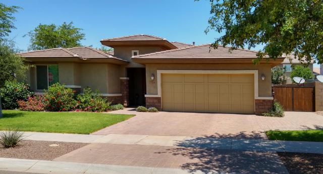 7454 E Plata Avenue, Mesa, AZ 85212 (MLS #5940951) :: The Kenny Klaus Team